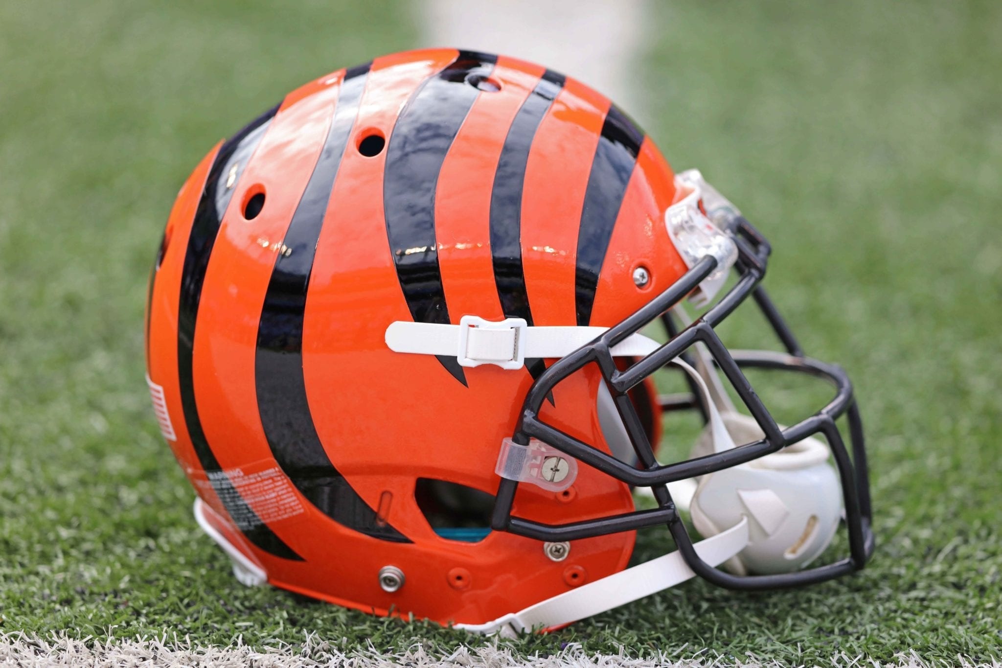 Bengals Sign K Jonathan Brown To Futures Deal ...