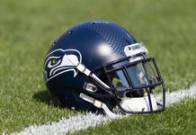 Seahawks Helmet